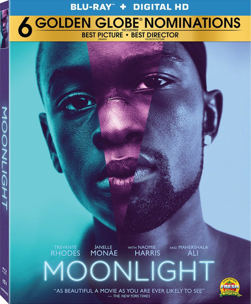 Moonlight (Luz de Luna) (2016) 720p y 1080p BDRip mkv Dual Audio AC3 5.1 ch