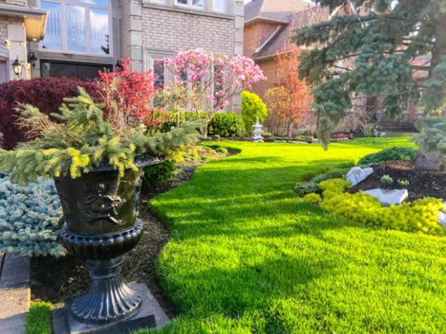 gambar cara Membuat dan Menata Taman Depan Rumah Sederhana