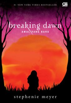 novel breaking dawn