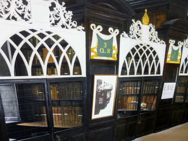 Dublin Hidden Places: Marsh's Library