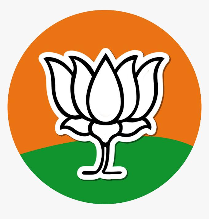 भारतीय जनता युवा मोर्चा लखनऊ महानगर की टीम घोषित