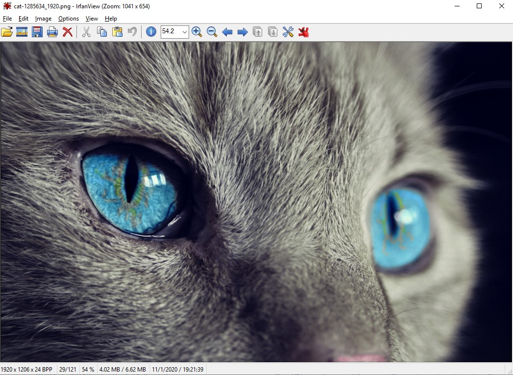 IrfanView | برامج عرض الصور للويندوز مجاناً