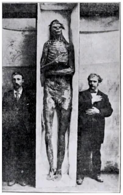 Gigante de los Woodland
