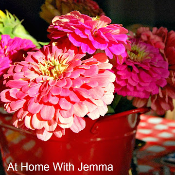 Growing Zinnias For The Home And Garden|Gardening Series 3