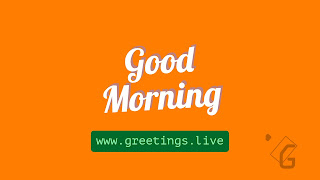 White good morning text located center of saffron background.greetings.live label placed below white text