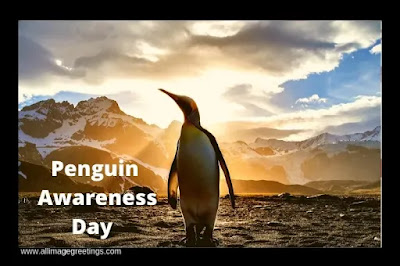 world penguin day 2021