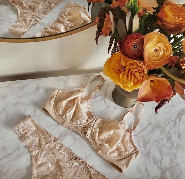 True & Co nude lace bra set