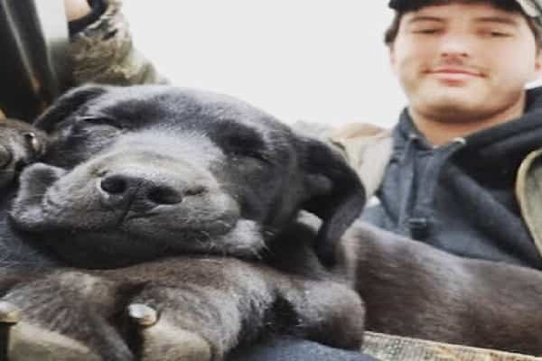 Deaf Guy Adopts Deaf Puppy Then Teaches Him Sign Language