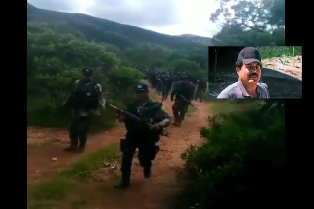 Video: Entre las brechas de Zacatecas y Durango Sicarios del Mayo Zambada son captados caminando en grupo camuflados entre la sierra