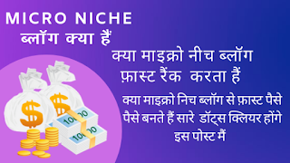 Micro Niche ब्लॉग क्या हैं- What Is Micro Niche Blogs