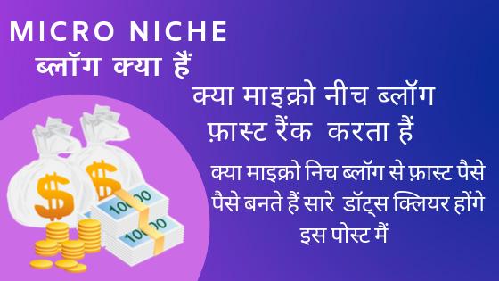 Micro Niche ब्लॉग क्या हैं और इसे फ़ास्ट पैसा कैसे कमाएँ