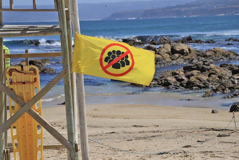 Bandera amarilla alertará sobre aforo máximo en las playas