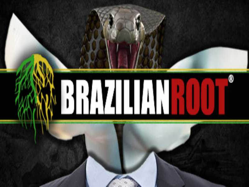 Download Brazilian Root Game PC Free on Windows 7,8,10