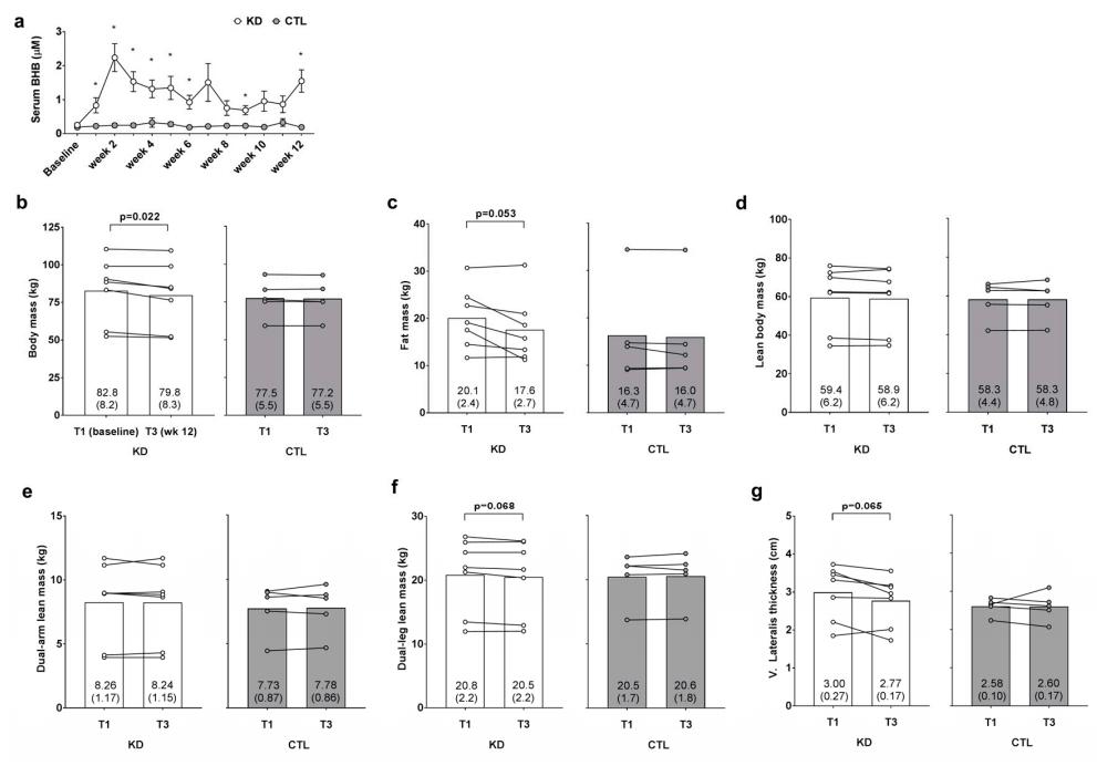 dieta cetogenica dr batter fase 1
