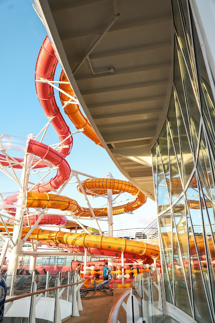 Waterslides | Oasis of the Seas Couple's Review