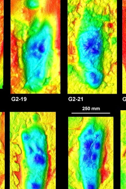 Researchers investigate world's oldest human footprints with software designed to decode crime scenes