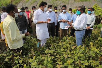सरकार नुकसानग्रस्त 'शेतकऱ्यांच्या' पाठीशी; पालकमंत्री संजय राठोड