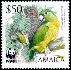 Virgin Islands Food Stamps