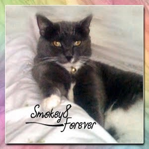 SMOKEY, FOREVER LOVED