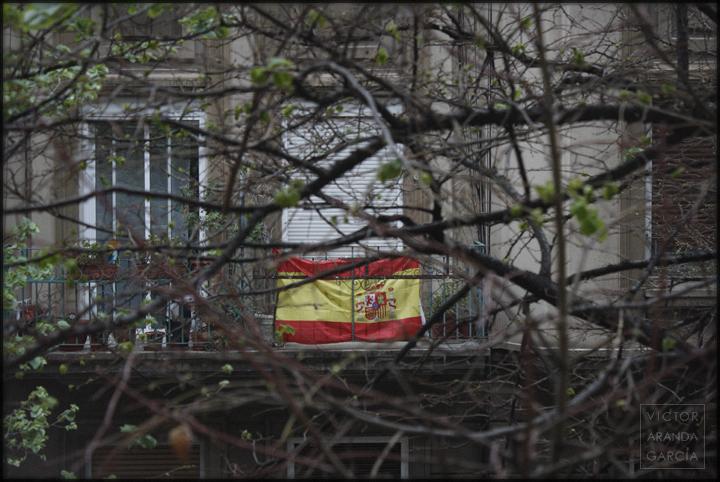 españa,bandera,balcon,valencia,ramas,naturaleza,crisis,serie