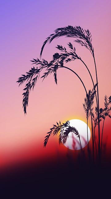 Sunrise Wallpaper Galaxy Note 7