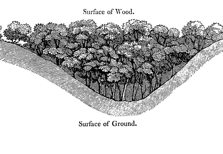 an illustration of 1816 landscape architecture for estate grounds