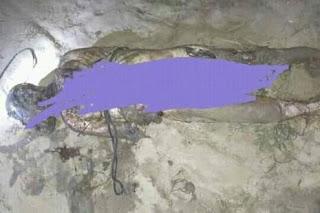 নাটোর লালপুর পদ্মা নদীতে মহিলার অর্ধগলিত লাশ উদ্ধার