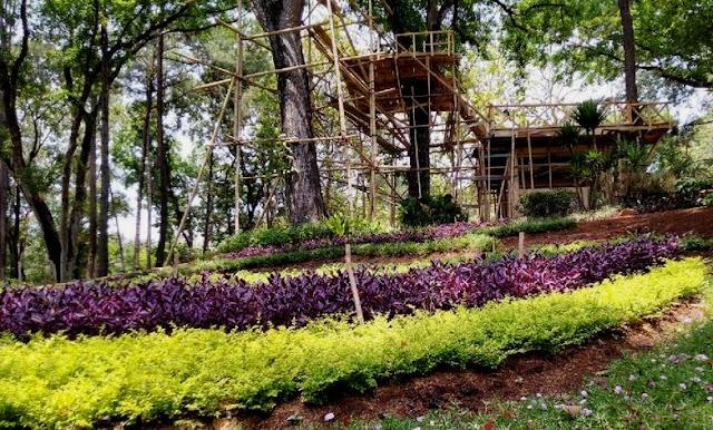 Wisata Taman Anggrek Mustika