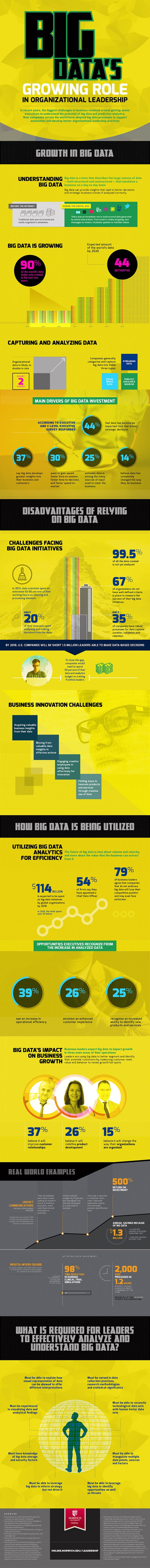 Big Data's Growing Role in Organizational Leadership #infographic