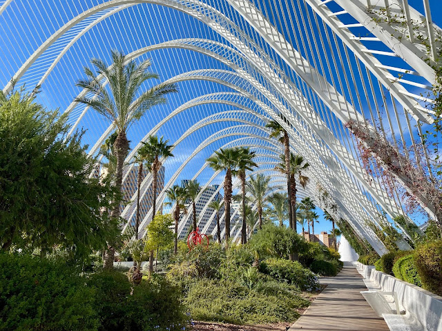 Palm trees inside the Umbracle walkway, City of Arts & Sciences, Valencia, Spain