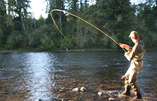 Ini Tips dan Trik Memancing Ikan di Sungai, Ayo Berangkat Mancing!