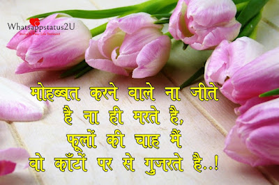 Whatsapp Profile Pic Hindi