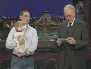 Σκύλος ηθοποιός