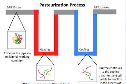 Perbedaan Antara Sterilisasi dan Pasteurisasi