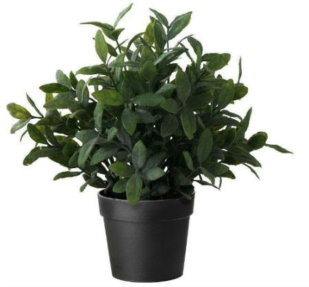 Amazon faux sage plant