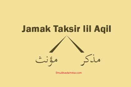 Contoh Jamak Taksir lil Aqil Mudzakkar dan Muannats