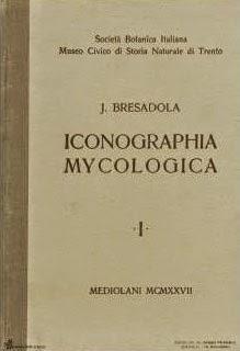 iconographia_micologica