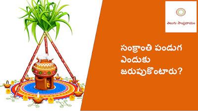 Why to celebrate Sankranthi Festival? సంక్రాంతి పండుగ ఎందుకు జరుపుకొంటారు ?