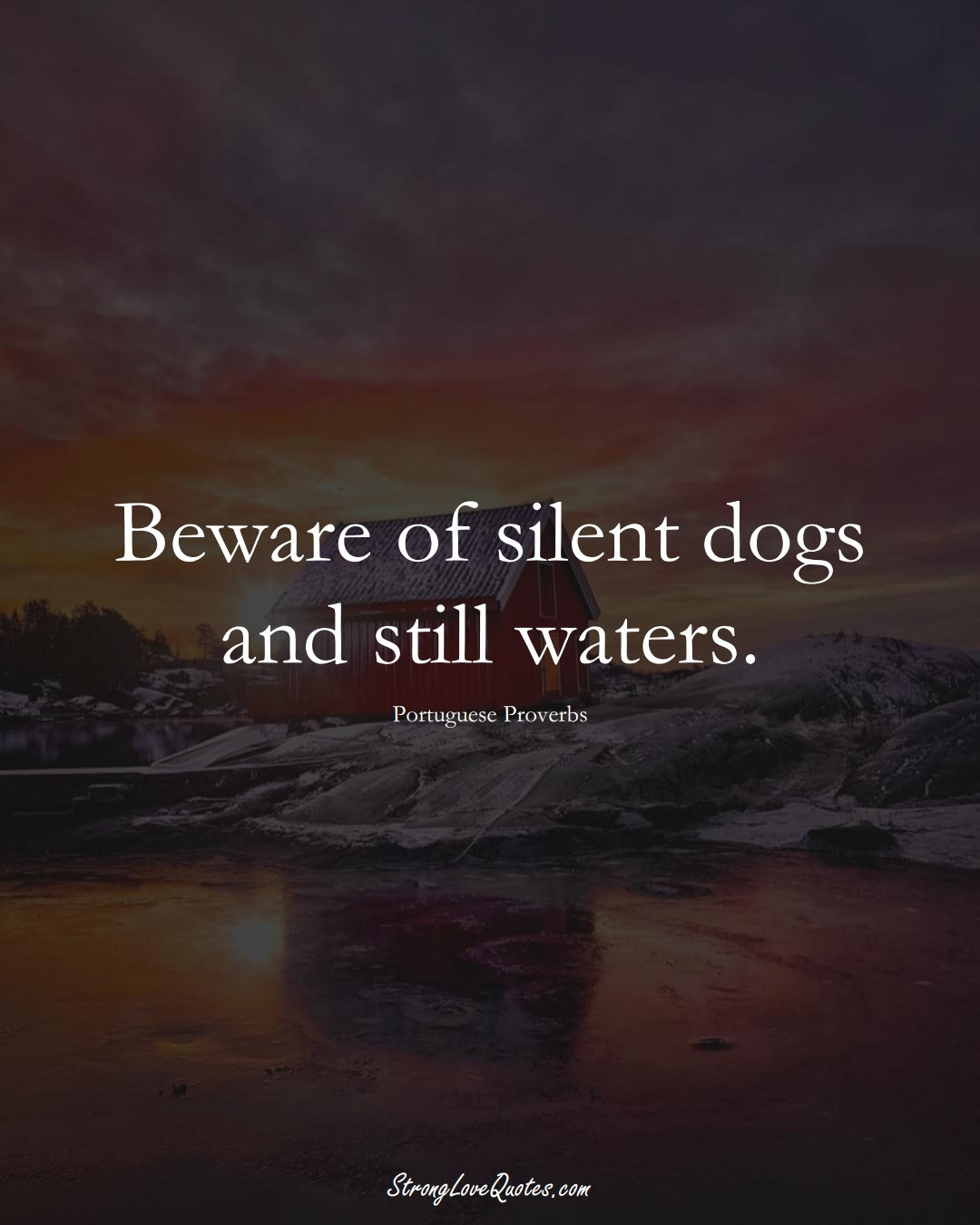 Beware of silent dogs and still waters. (Portuguese Sayings);  #EuropeanSayings