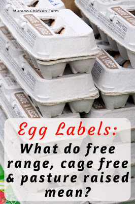 Understanding the words on an egg carton