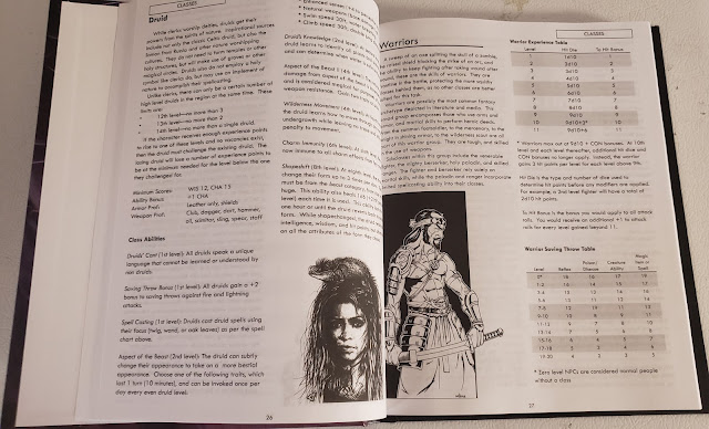 Chromatic Dungeons Advanced Rules