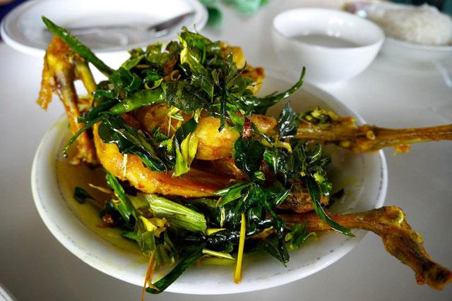 Ayam Pramugari