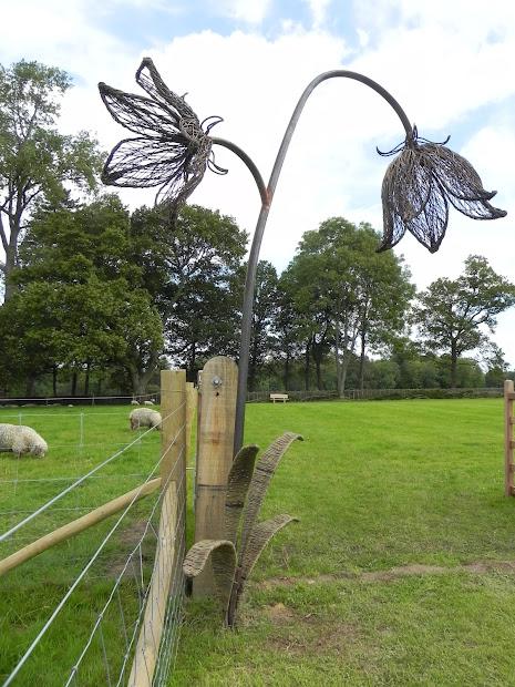 Tom Hare Willow Man Uk Native Seed Hub Wakehurst Place