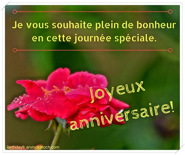 Carte d'anniversaire, vous, souhaite, plein, bonheur,  journée spéciale, Rose