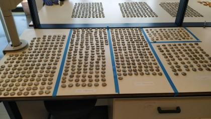 Αρχαία ελληνικά νομίσματα από την Τουρκία στη Γερμανία με… λεωφορείο
