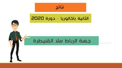 نتائج الباكبلوريا 2020 لجهة الرباط سلا القنيطرة في ملف واحد
