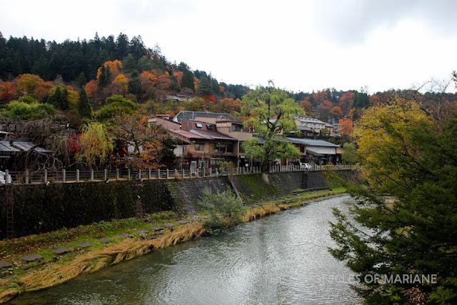 takayama blog