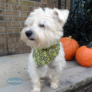 Spooky Spots and Spirals Reversible Halloween Dog Bandana