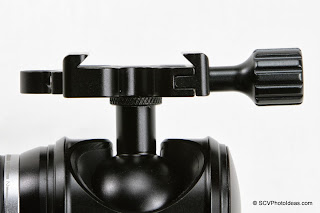 Desmond DAC-X1 Skeleton QR Clamp jaws view
