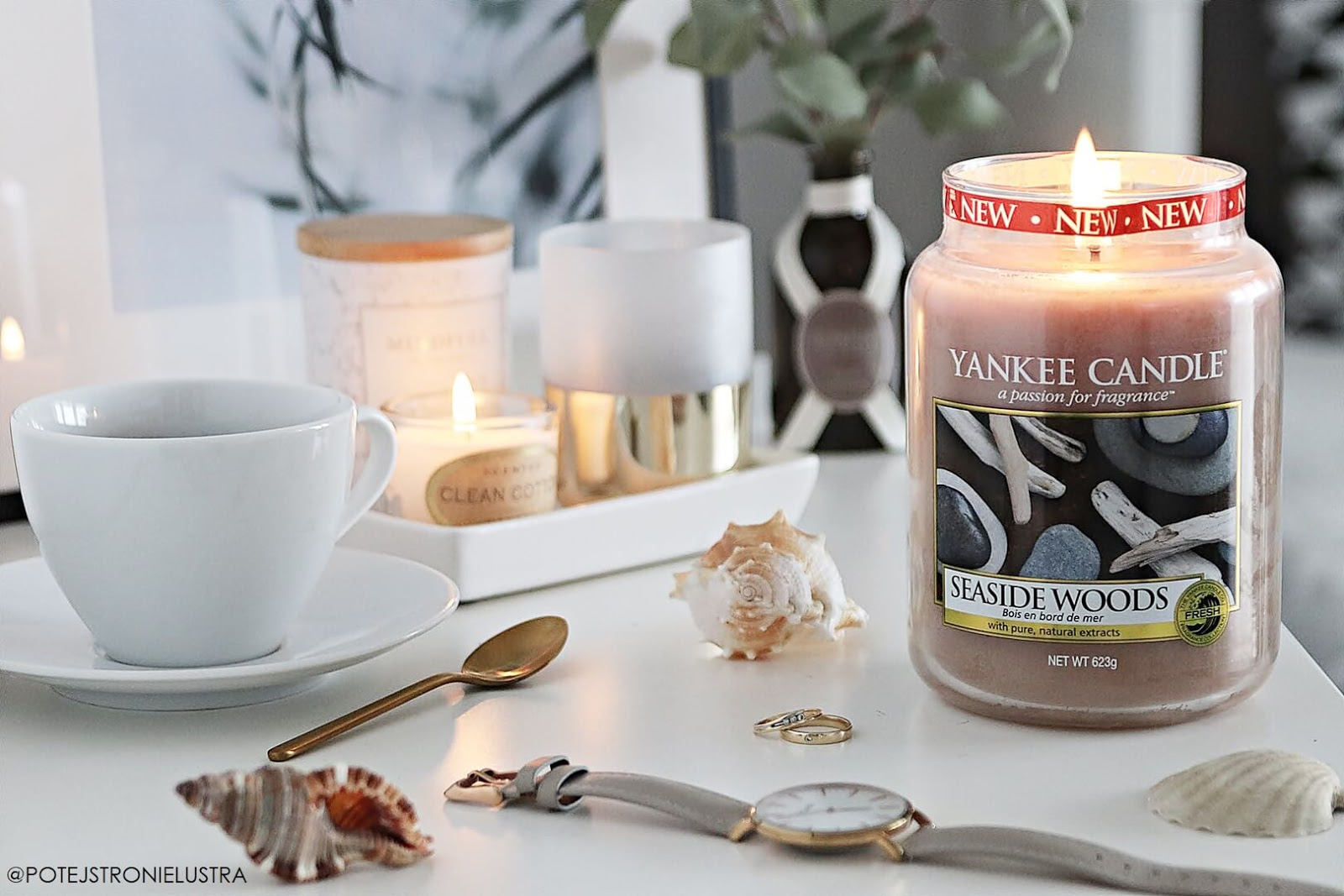 yankee candle seaside woods nowość 2019